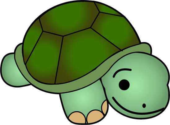 549x402 Browse Baby Turtle Clip Art Clipart Panda