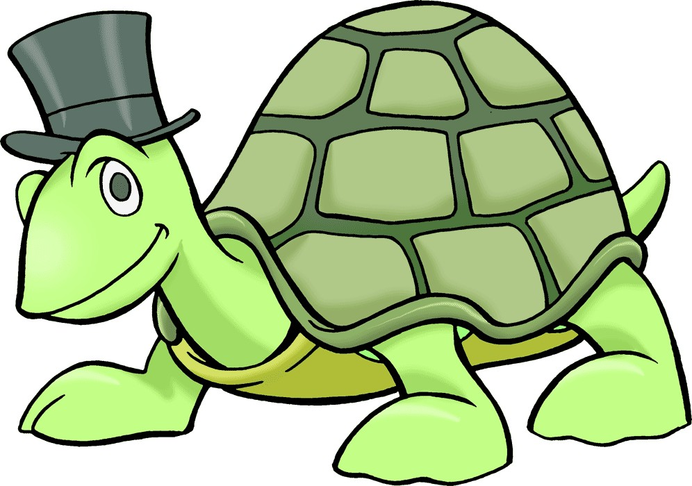 996x700 Sea Turtle Clip Art Free Clipart Images 3
