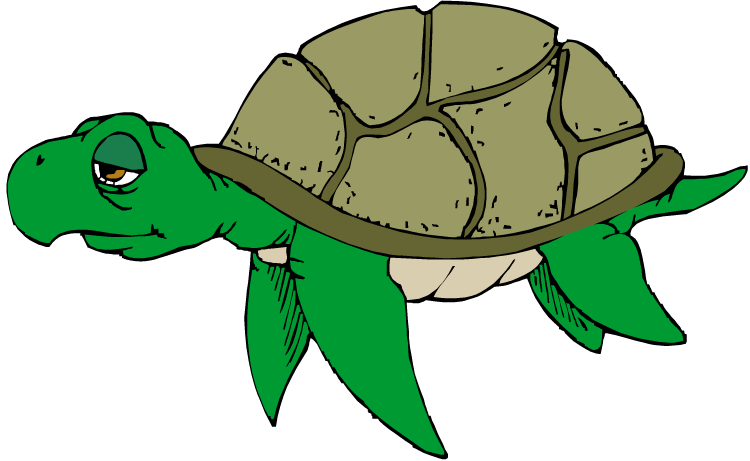750x461 Turtle Clip Art Black And White Free Clipart Images 2
