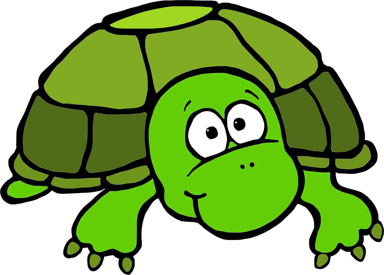 1600x1149 Turtle Clip Art By Hallow Graphics 6 Free Images
