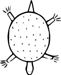 246x299 Cartoon Turtle Outline Clip Art