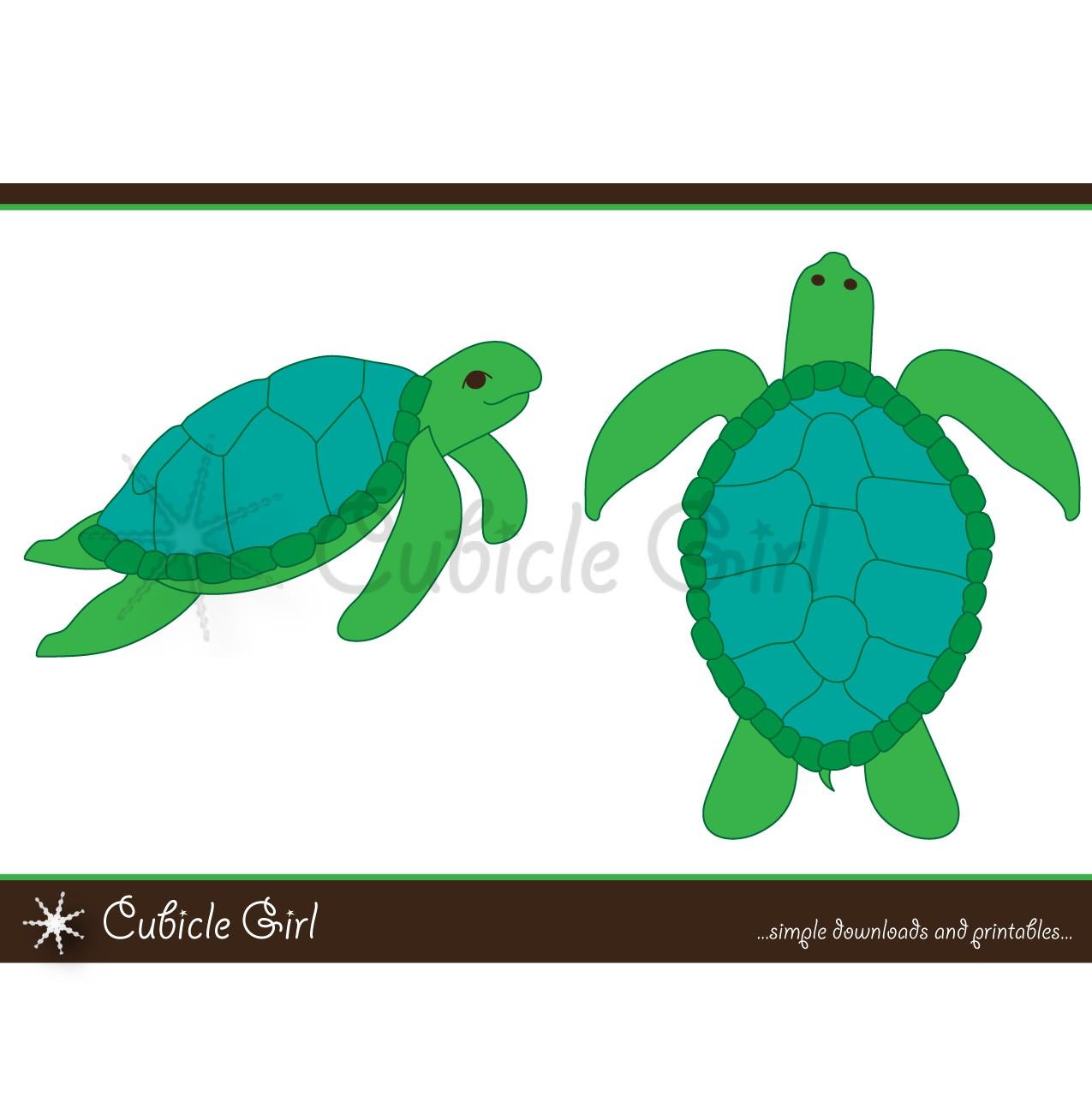 1275x1294 Desert Sea Turtle Clipart, Explore Pictures