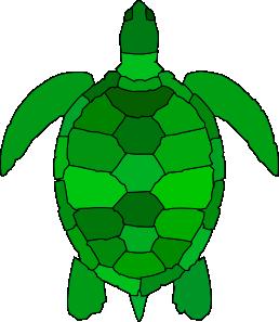 258x297 Turtle Clip Art