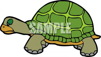 350x197 Picture Of A Turtle Standing In A Vector Clip Art Illustration