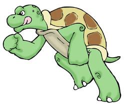 250x217 Slow Clipart Slow Turtle