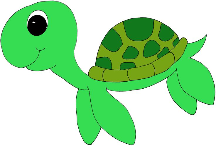 736x499 Turtle Clipart Printable