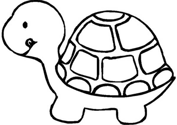 600x424 Cute Little Turtle Coloring Page Coloring Sun