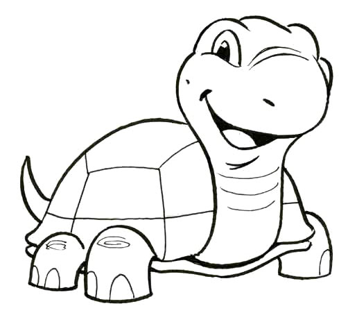 502x477 Cute Little Turtle Coloring Pages Kids Coloring Pages