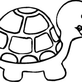 268x268 Free Printable Turtle Coloring Pages For Kids Coloring Pages