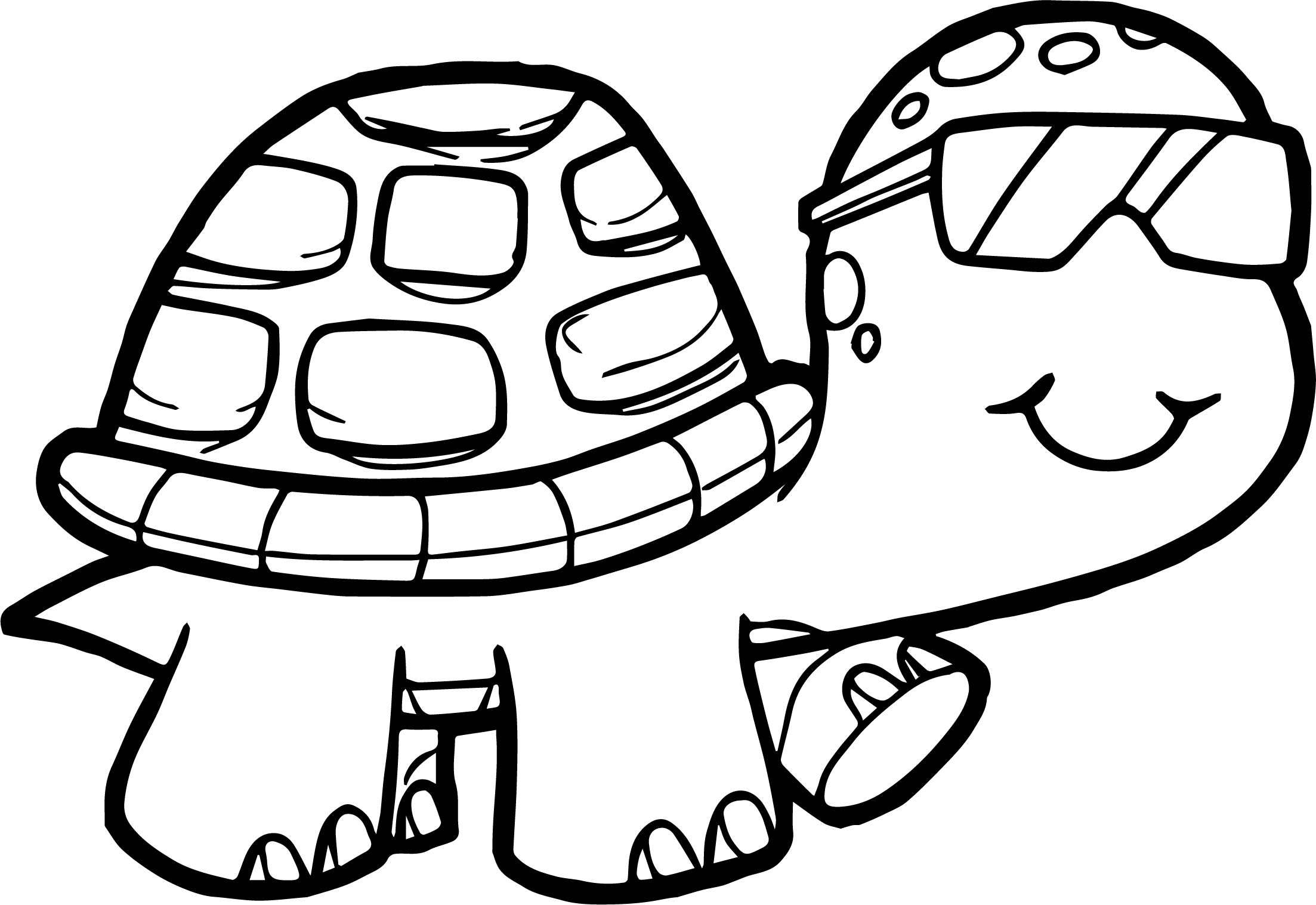 2206x1517 Glasses Tortoise Turtle Coloring Page Wecoloringpage
