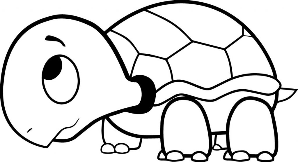 1024x555 Printable Turtle Coloring Pages