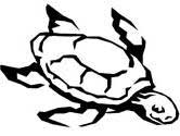 166x125 Turtles Coloring Pages