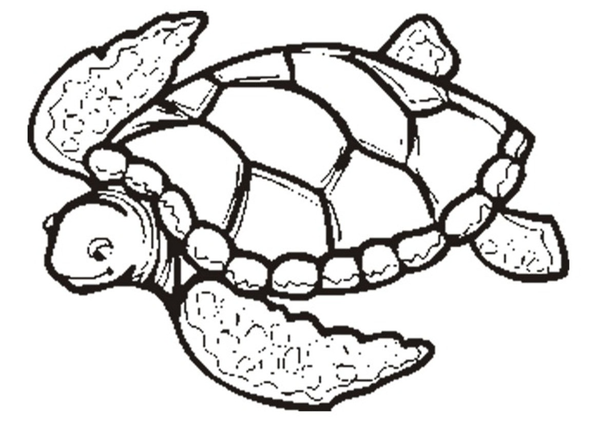 1169x826 Awesome Turtle Coloring Pages 75 For Seasonal Colouring Pages
