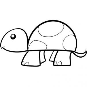 302x302 How To Draw How To Draw A Turtle For Kids