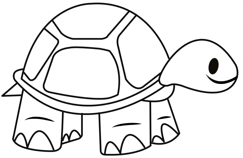 1024x668 Simple Drawing Of A Turtle How To Draw A Tortoise Easy And Simple