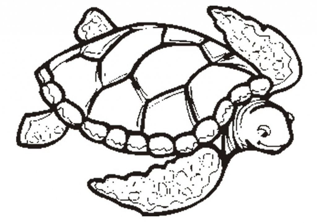 1024x723 Simple Sea Turtle Drawing Coloring Pages Of Sea Turtles