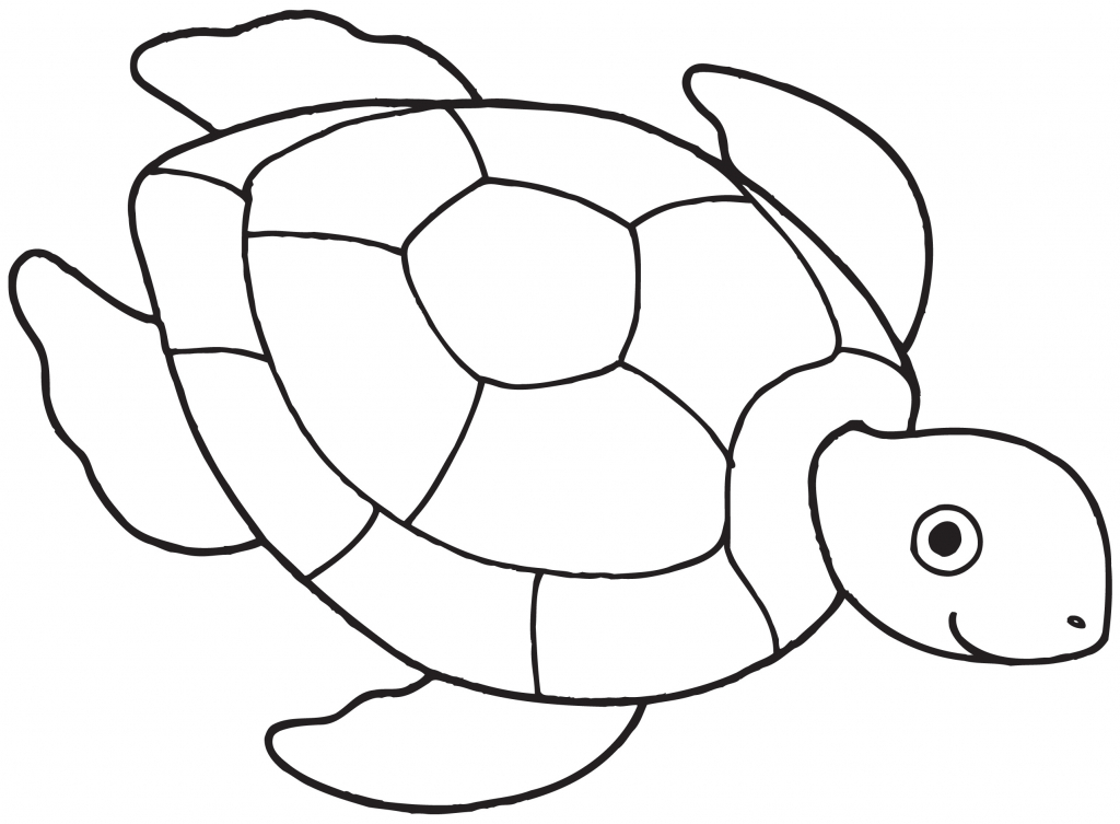 1024x753 Simple Turtle Drawing How To Draw A Sea Turtle Cartoon Sea Turtle