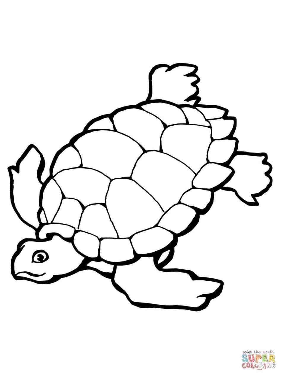 948x1264 Easy To Draw Sea Turtles