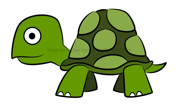 600x349 To Draw An Illustration Of A Turtle