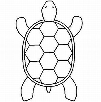 348x350 27 Images Of Turtle Drawing Template