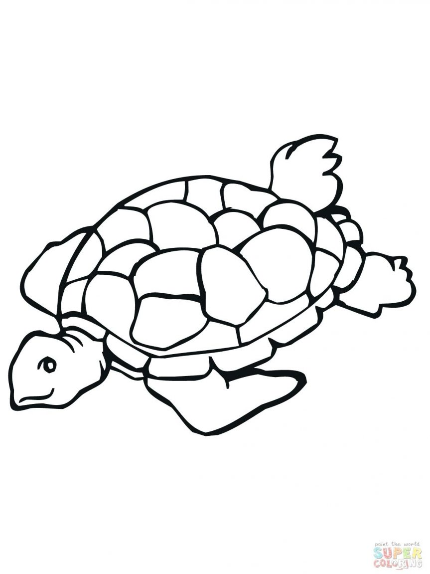 863x1151 Sea Turtle Coloring Pages Turtles Outline Drawing Printable Images