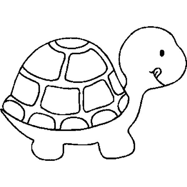600x600 Seasonal Colouring Pages Outline Of Turtle At Set Gallery Coloring
