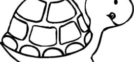 272x125 Sea Turtle Outline Coloring Coloring Pages On Cartoon Turtle