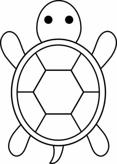 photograph regarding Turtle Templates Printable titled Turtle Define Free of charge obtain least complicated Turtle Define upon