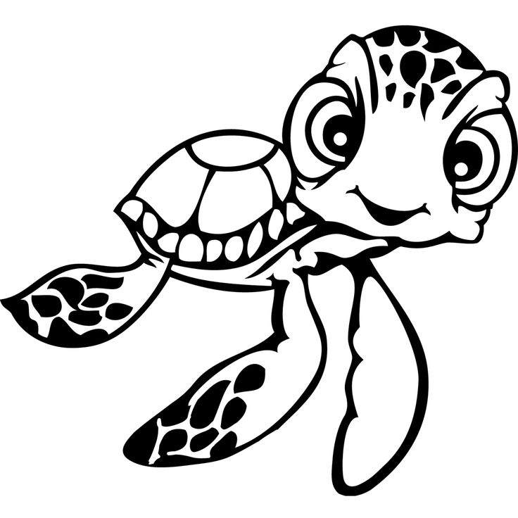 736x736 Best Turtle Coloring Pages Ideas Kids Coloring