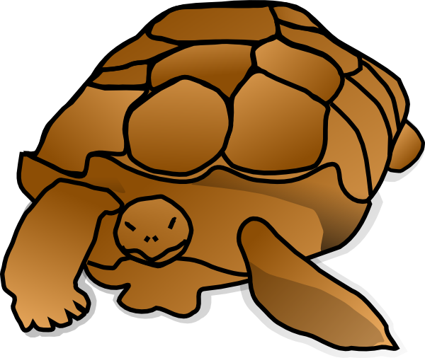 600x506 Turtle Cartoon Clip Art