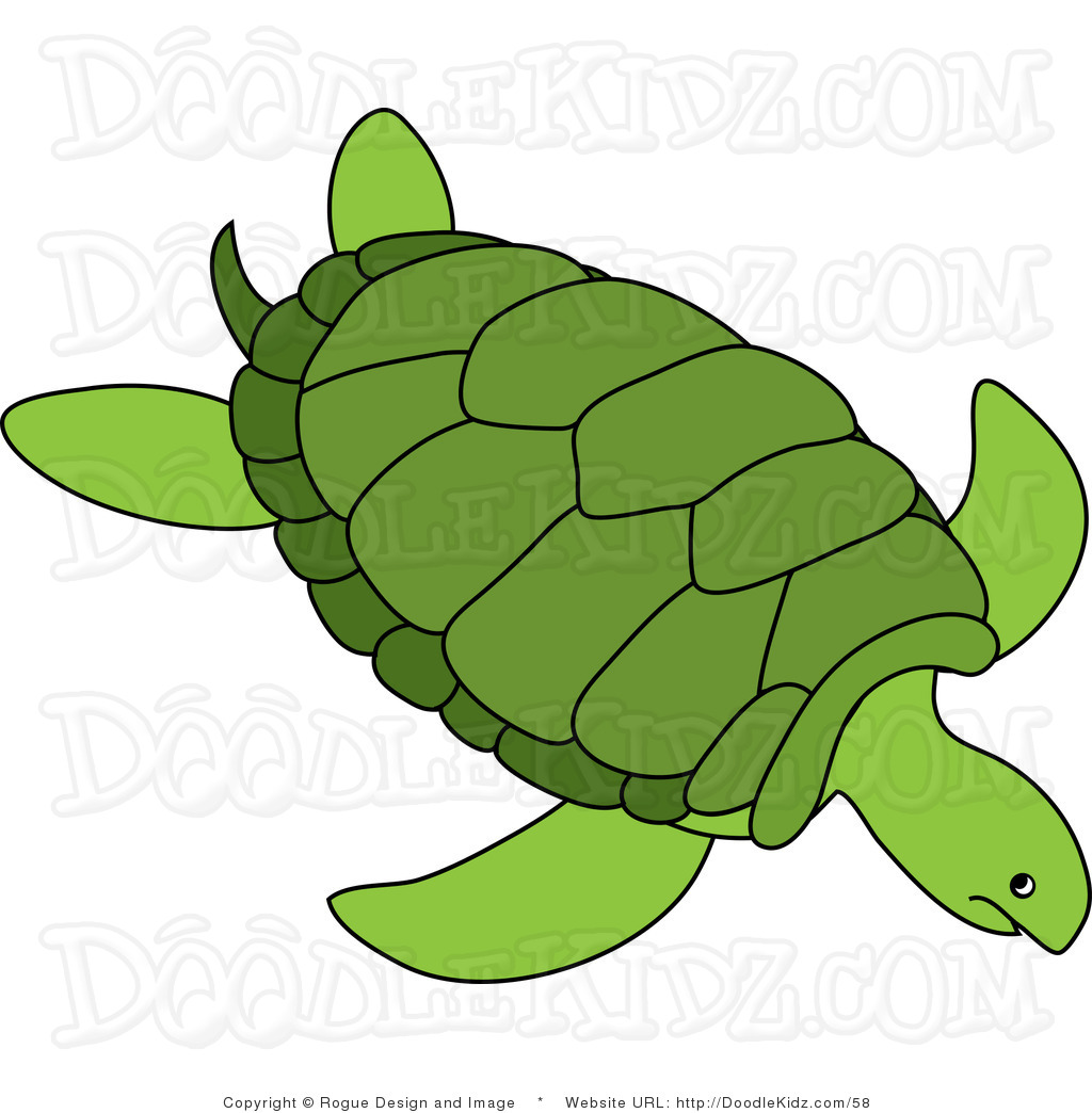 1024x1044 Turtle Clipart