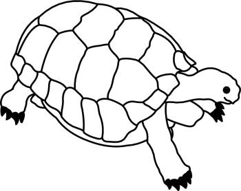 350x278 Turtoise Clipart Black And White