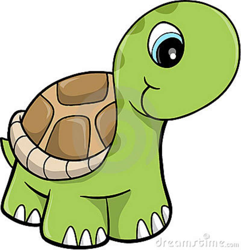 800x830 Free Cute Clip Art Cute Safari Turtle Vector Illustration