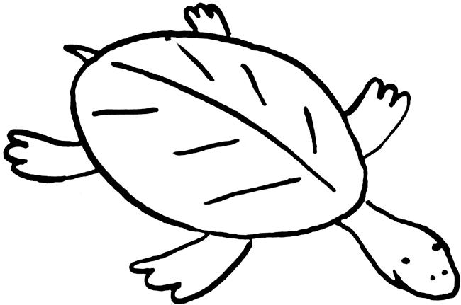 650x431 Turtle Images Clipart