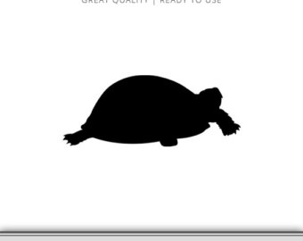 340x270 Turtle Outlines Etsy