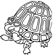 176x176 Turtles Coloring Pages Free Coloring Pages