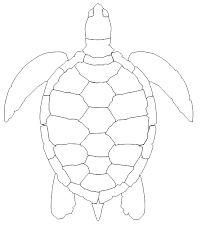 211x239 Best Turtle Outline Ideas Turtle Pattern