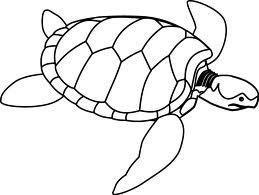 259x195 Sea Turtle Outline
