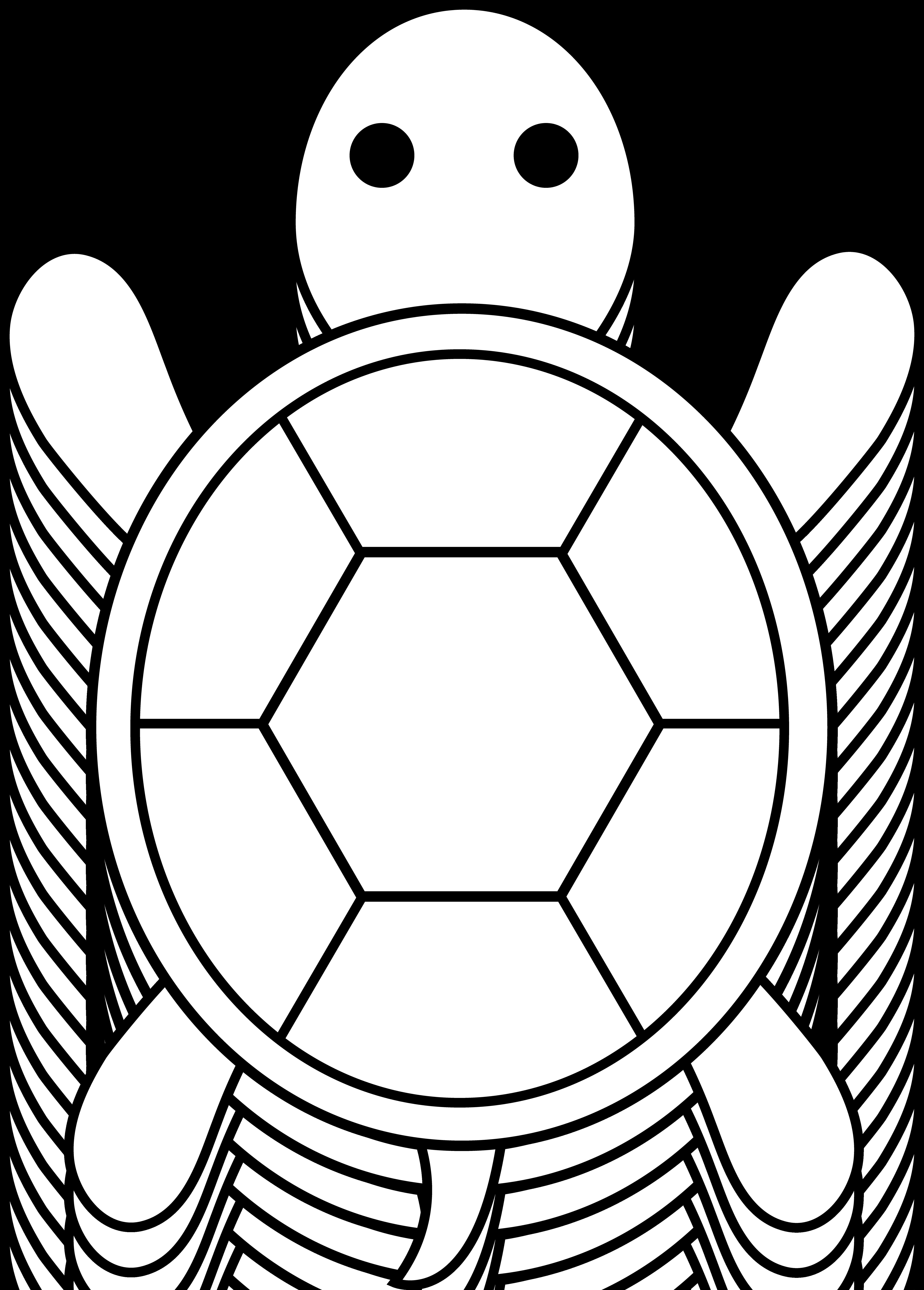 5178x7226 Cute Colorable Turtle