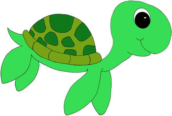 600x407 Cartoon Sea Turtle Clipart Sea Turtle 4