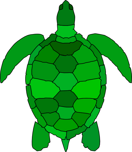 516x594 Best Turtle Clipart