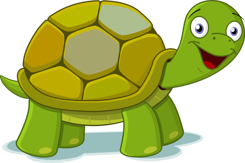 800x534 Clipart Turtle