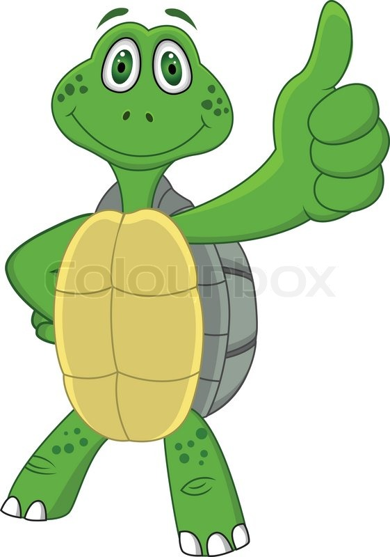 561x800 Turtle Cartoon Stock Vector Colourbox