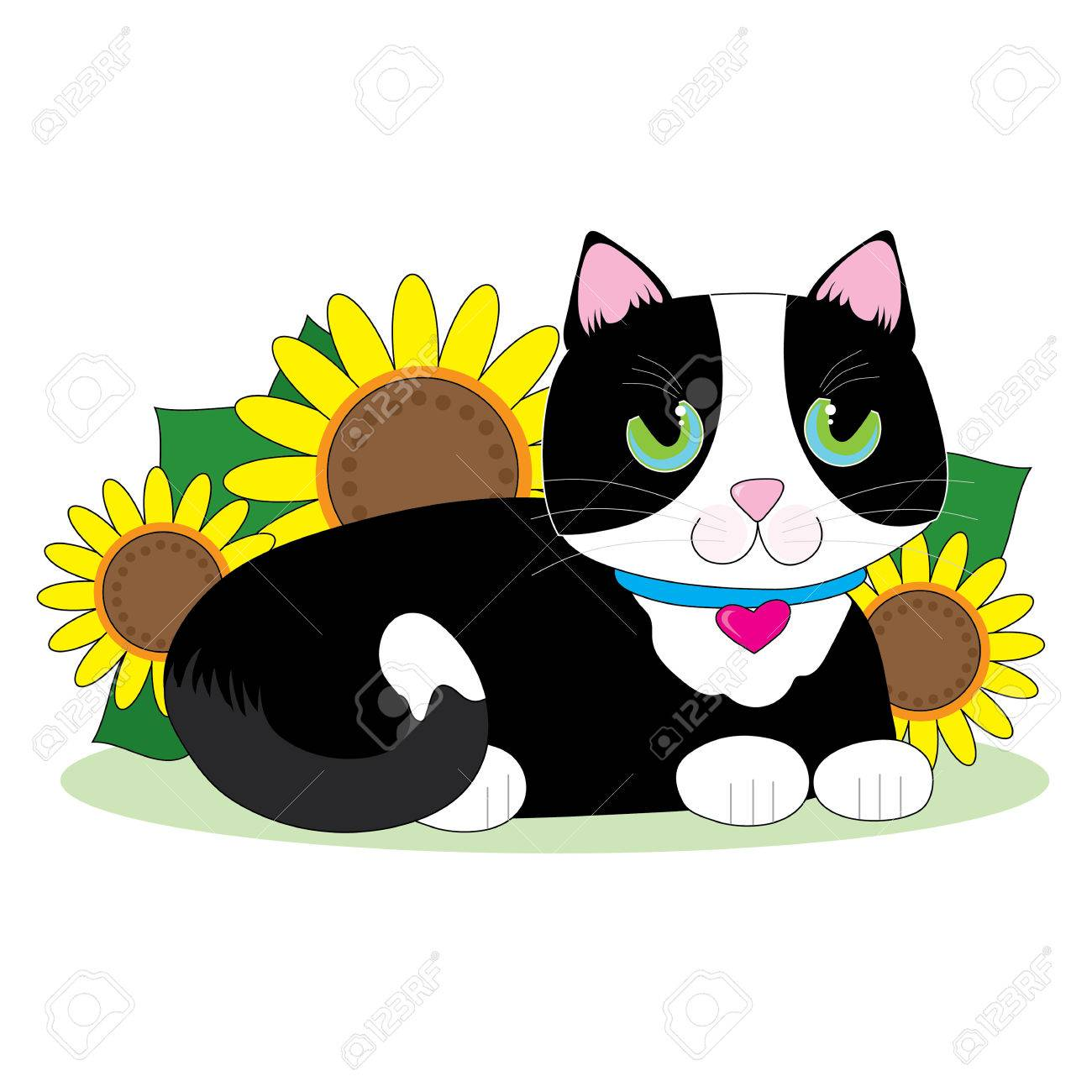 1300x1300 Black And White Tuxedo Cat Lying Down In A Bed Of Sunflowers