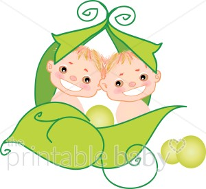 300x275 Twin Babies In A Peapod Peas In A Pod Clipart