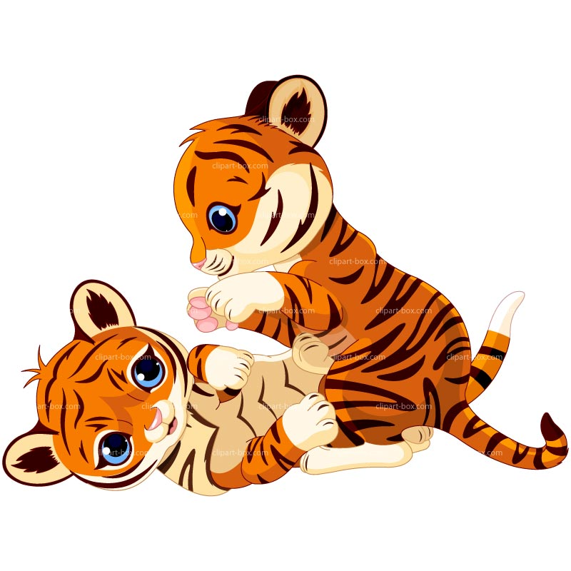 800x800 Baby tiger cartoon tigers clip art image