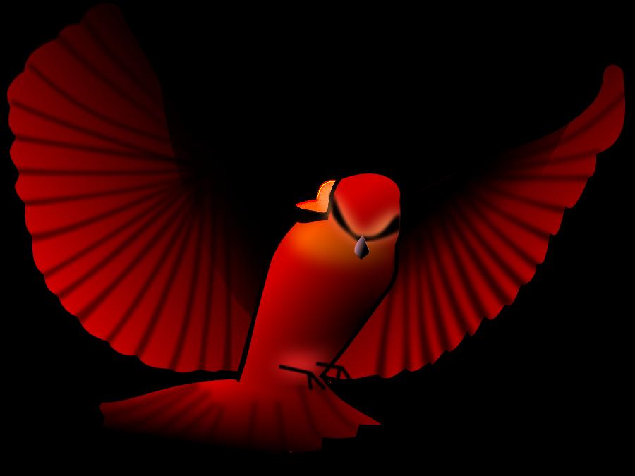 900x675 Bird Clip Art Bird Images 5