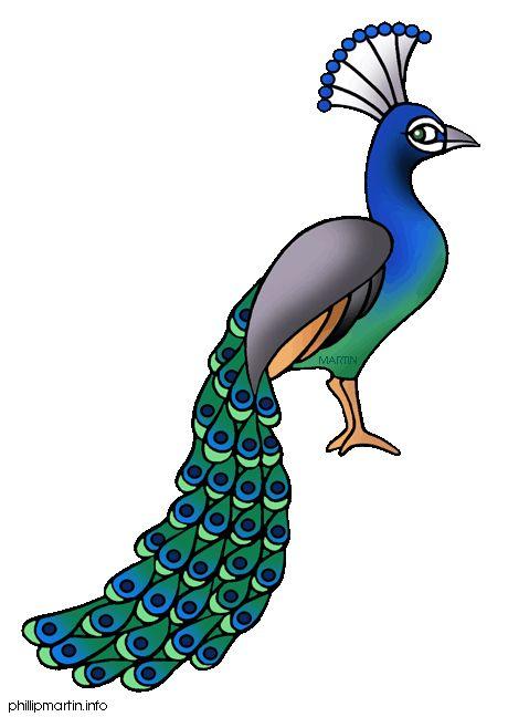 460x648 81 Best Cartoon Birds Images Birdhouse, Birds