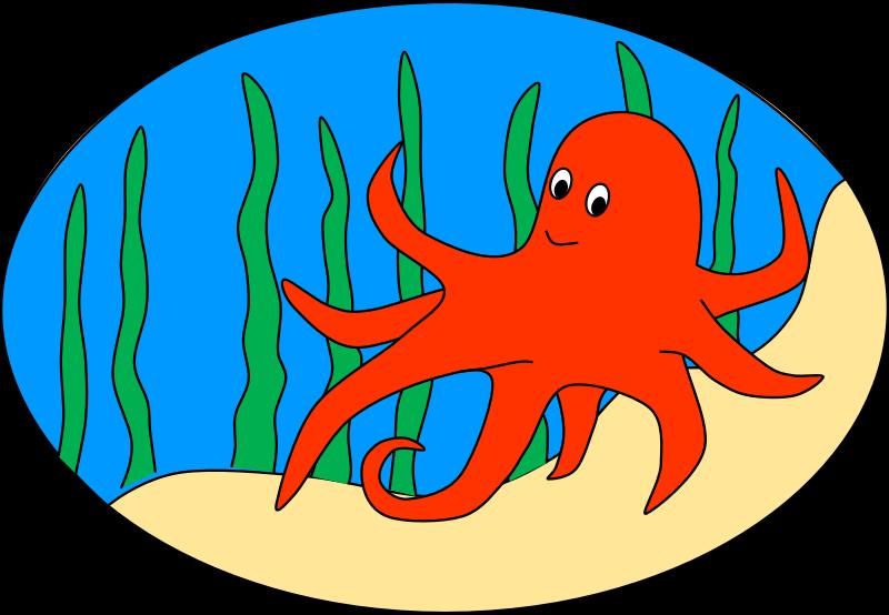 800x554 Free To Use Amp Public Domain Sea Creatures Clip Art