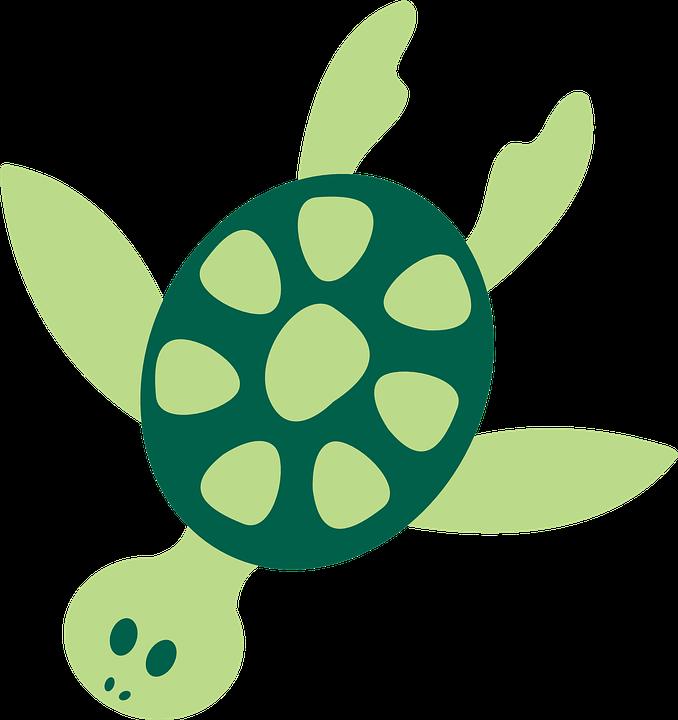 678x720 Sea Turtle Clipart Ocean Animal